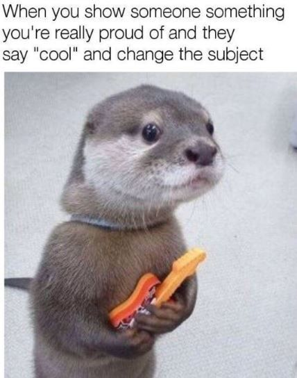 15 Funny Memes Of Everyday Life You Can Relate To Funny Animal Memes Funny Animal Jokes Cute Animal Memes