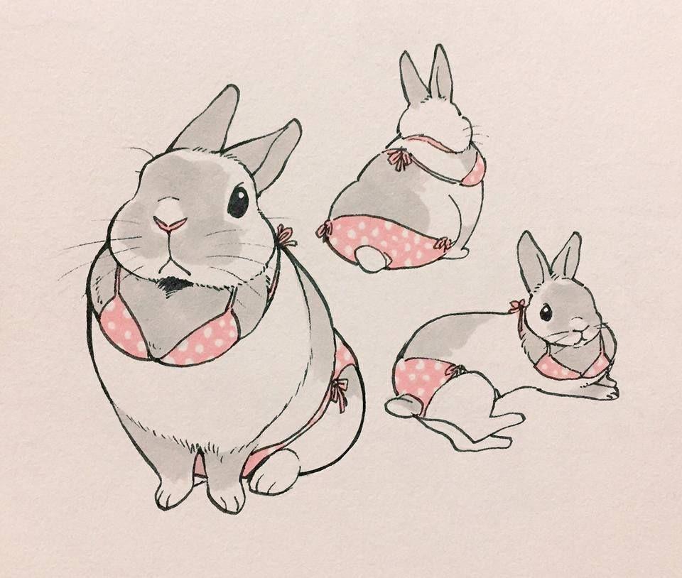 Bunny Art Cute Funny Bunnies Drawing Baby Rabbit