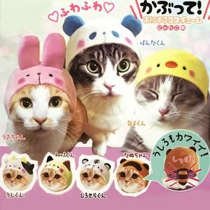 animal hat for cats kabutte animal costume nyanko in
