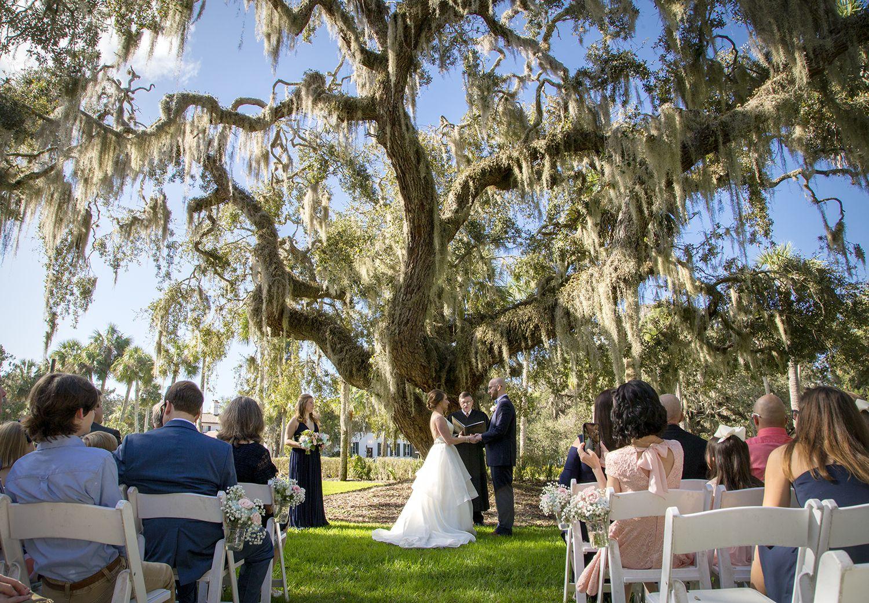 Wedding Ceremony Underneath The Beautiful Live Oak At Cherokee Cottage Georgia Wedding Jekyll Island Dream Destination Wedding