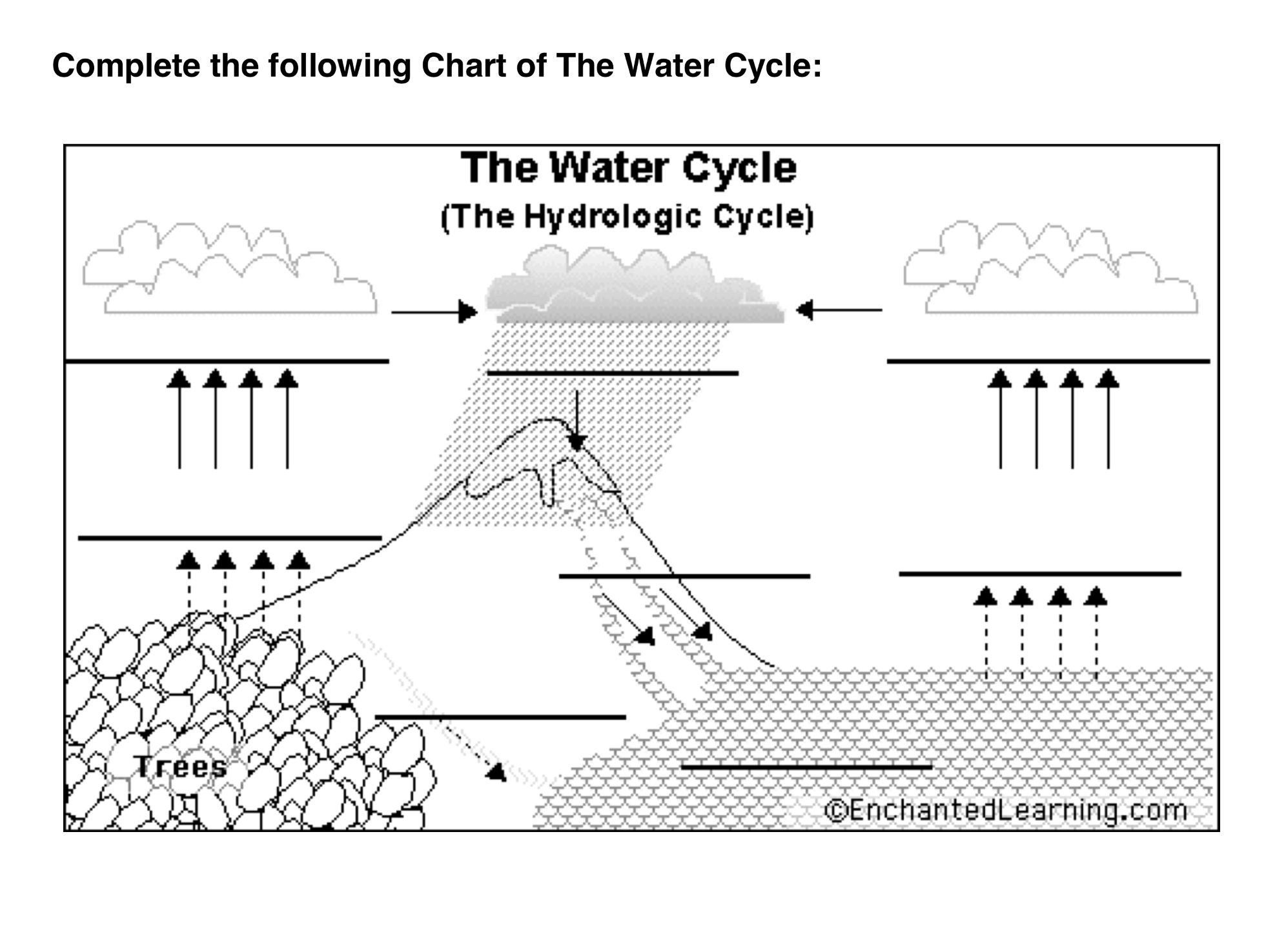 The Water Cycle Worksheet The Water Cycle Worksheet 2
