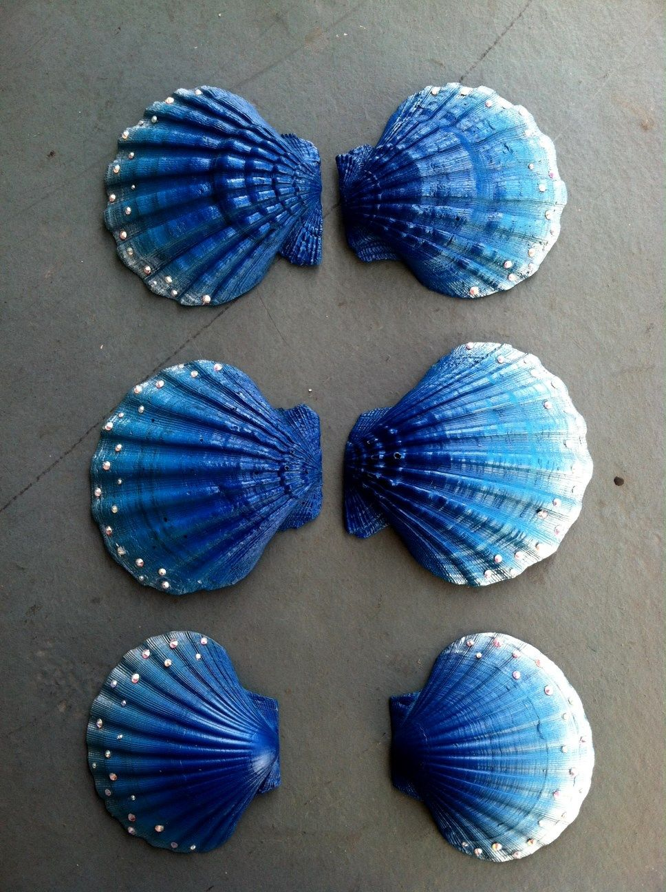 Hand painted shells shells pinterest painted shells for Shell art and craft