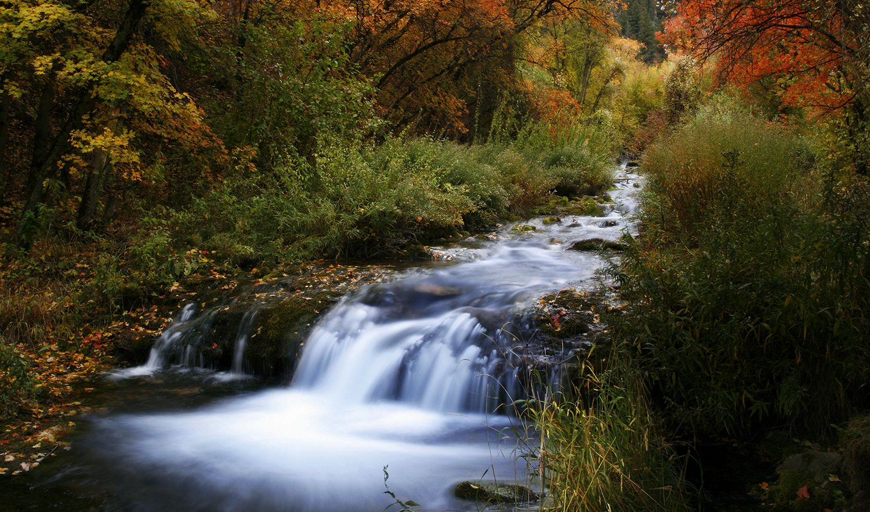 Extraordinary Home: Hobble Creek Canyon Retreat | Springville, Utah |  UtahHome.me | Utah Home | Pinterest | Utah And Cross Country Skiing