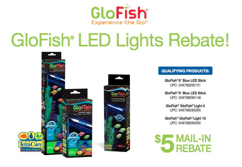 Save on GloFish® Lighting | Glofish, Blue led lights, Led ...