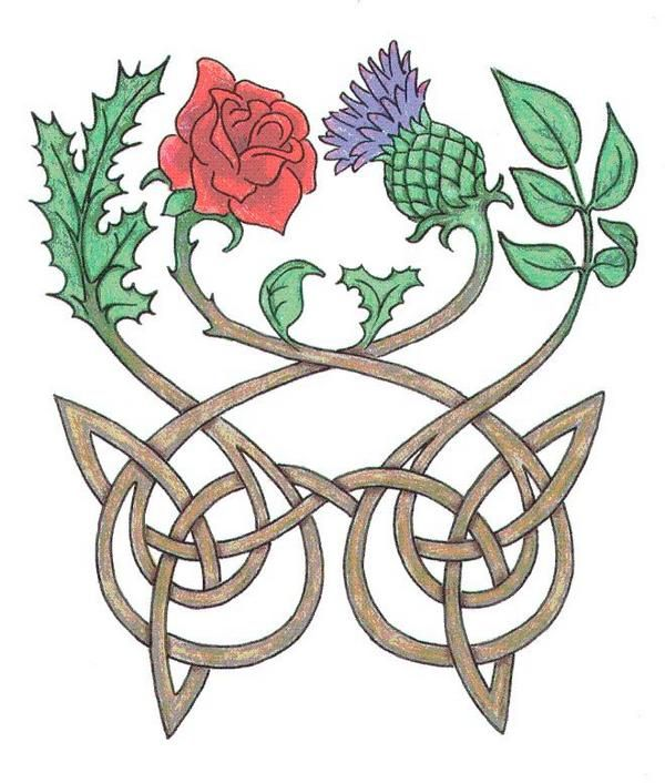 Scottish Thistles Tattoos Designs Scottish Thistles: Rose And Thistle Motif For Our Scots/English Marriage