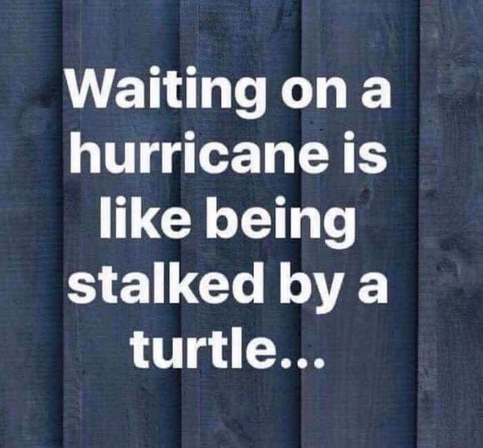 Pin By Jennifer On Giggles Weird Quotes Funny Hurricane Memes Funny Quotes