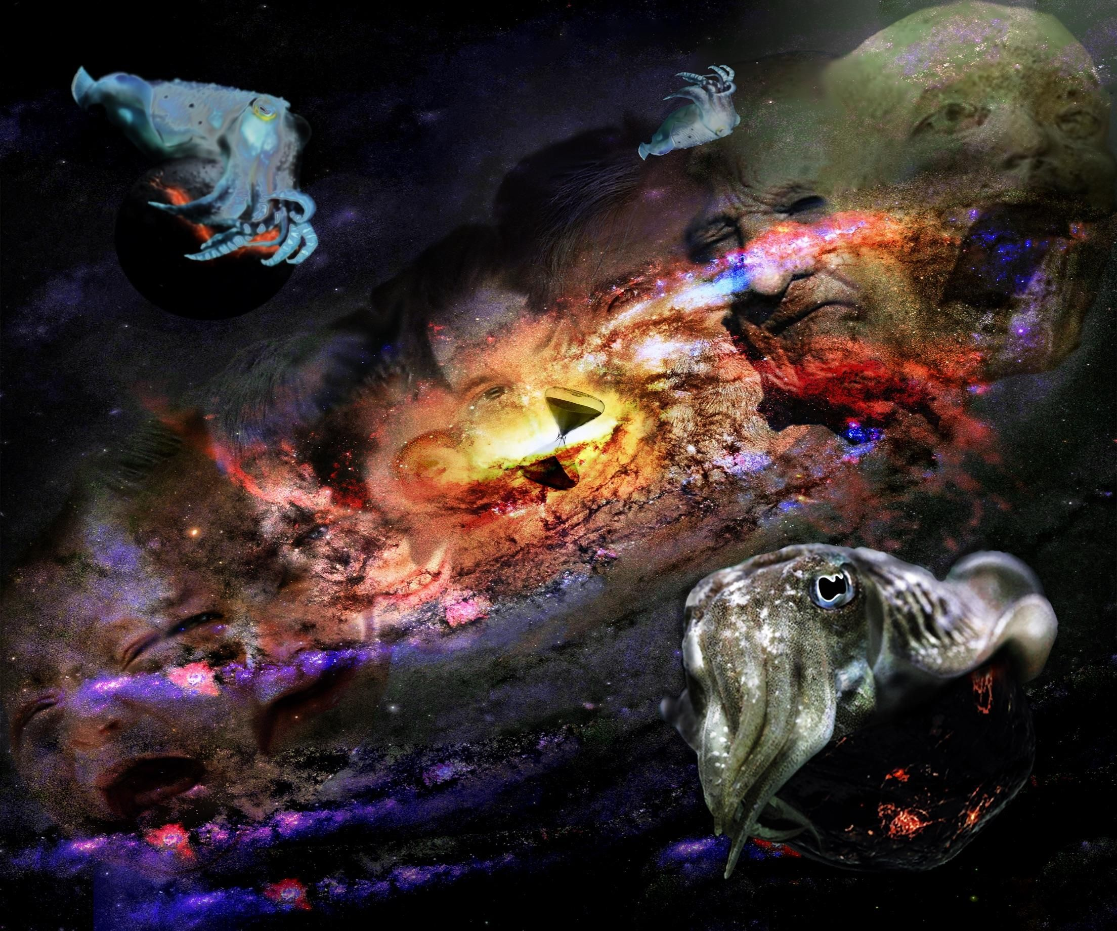 The Cosmos Photoshop 12x10 300dpi http://ift.tt/2ziudDW