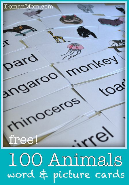 100 Free Animal Picture and Word Flash Cards for teaching your child