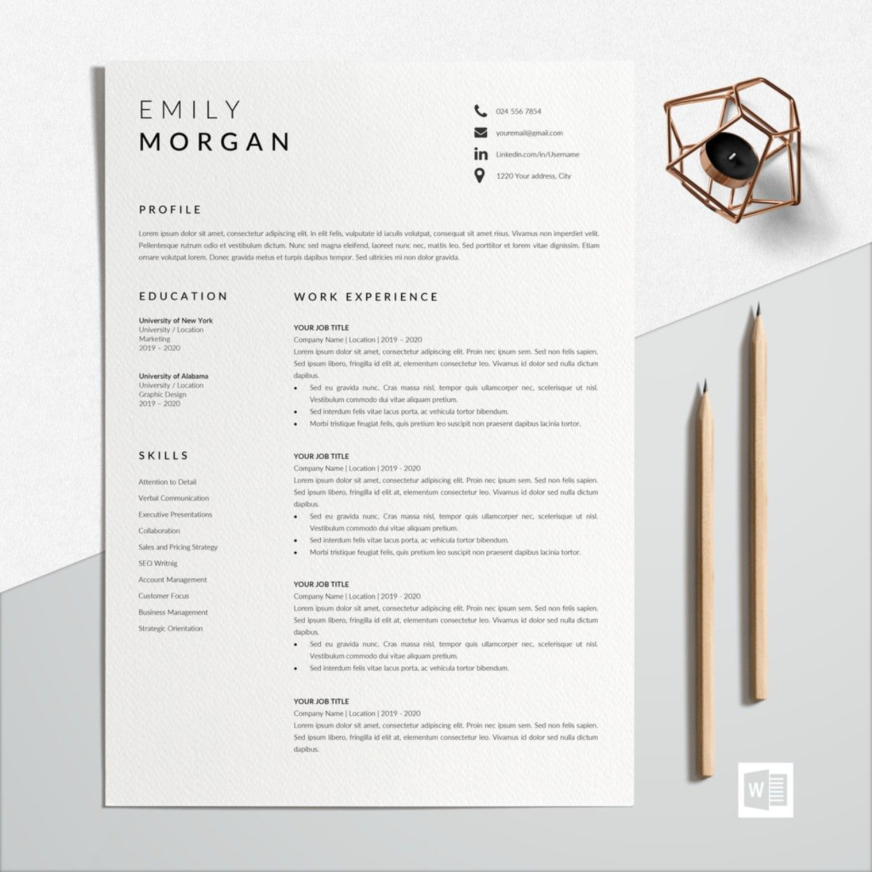 professional resume format work cv template modern