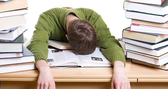 Theory testing dissertation picture 1