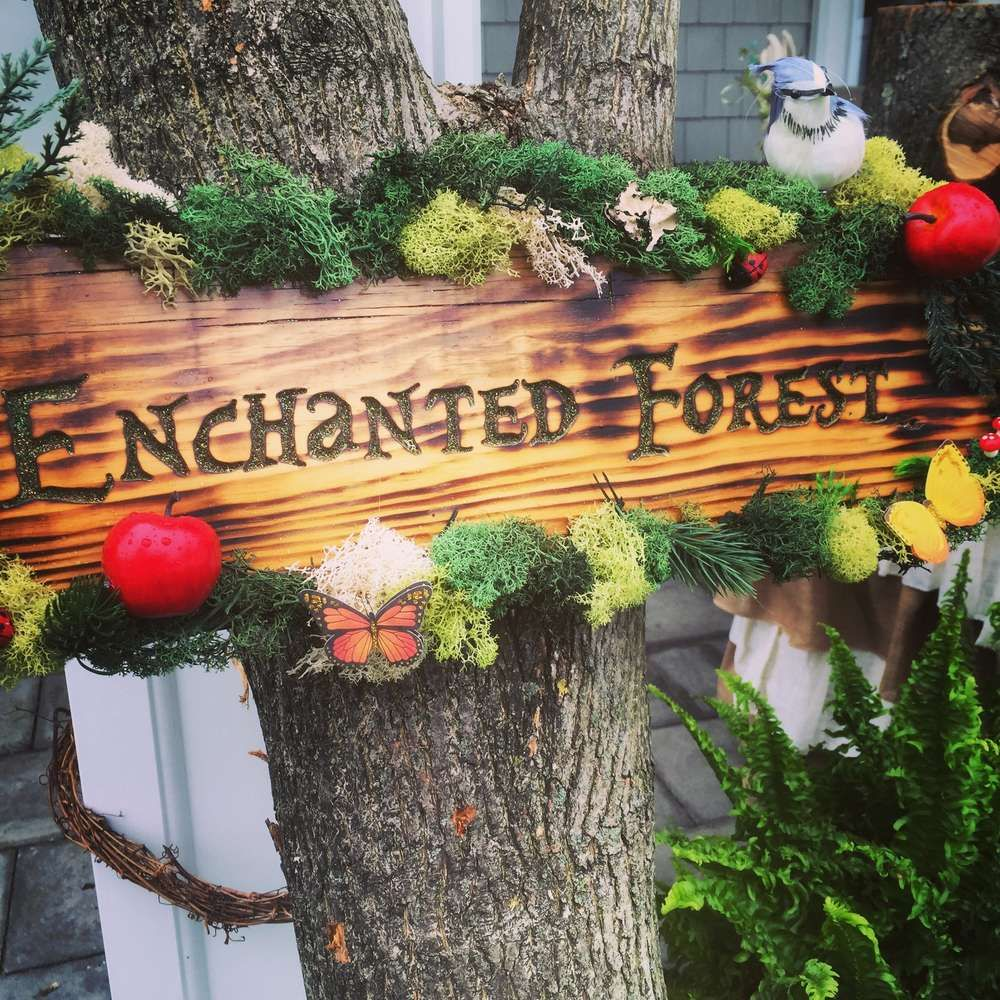 Snow Wedding Ideas: Gorgeous Wood Sign At A Snow White Birthday Party! See