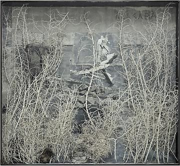 ANSELM KIEFER  Merkaba, 2010  Photograph, acrylic, shellac, ash, cotton dress, burned books, and plaster coated thorn bushes in glass and steel frame