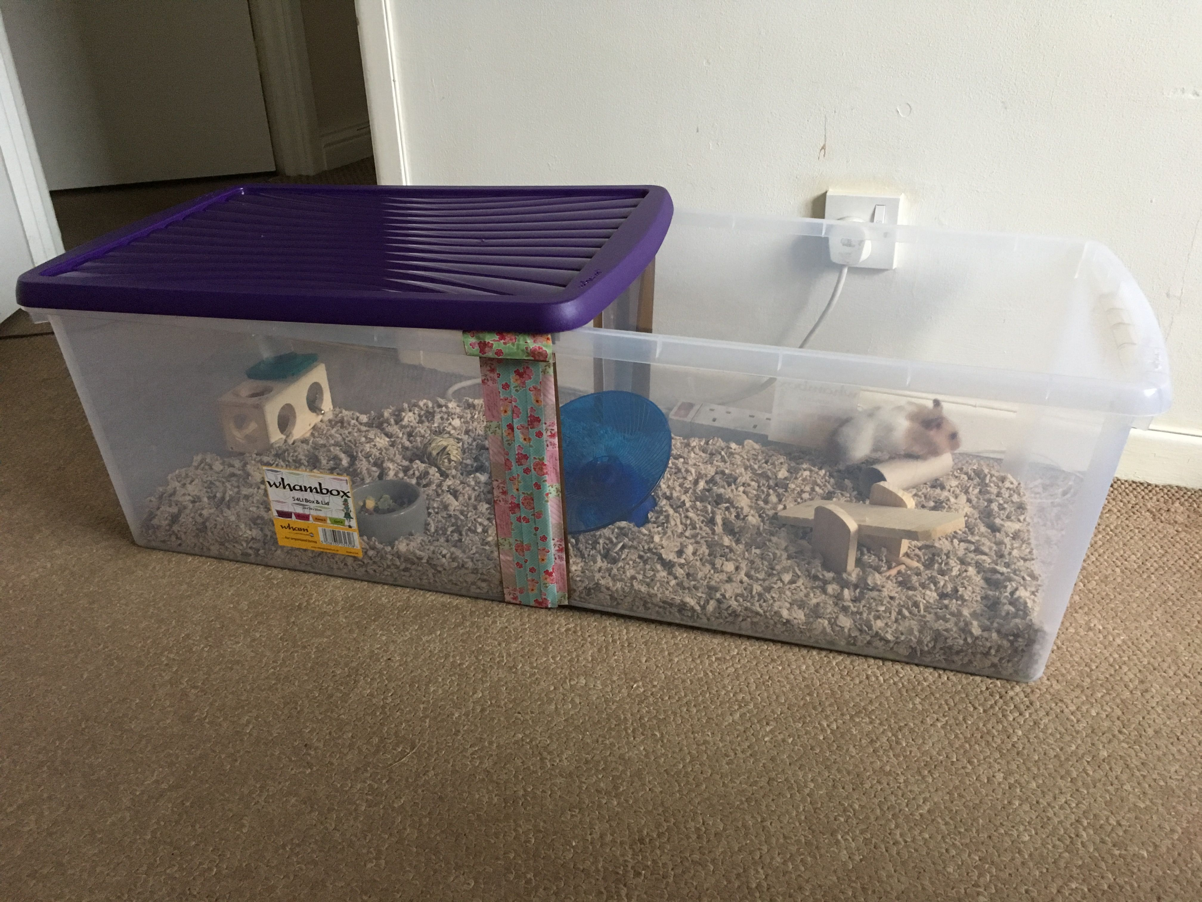 Hamster Bin Cage 54lt Box 59 X 39 X 30 Inches Hamster Bin