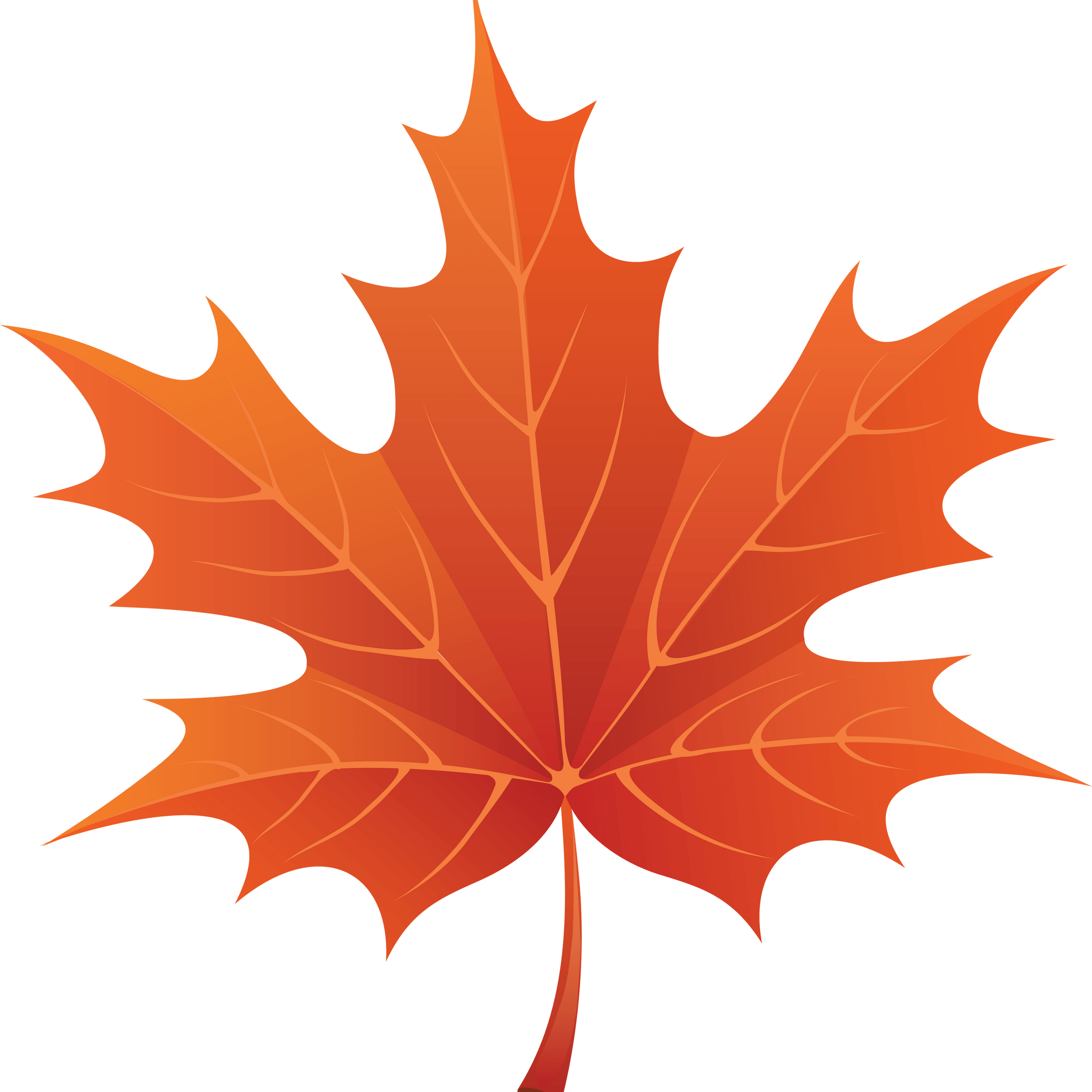Yellow Maple Leaf Yellow Leaves Fall Leaves Png Autumn Leaves