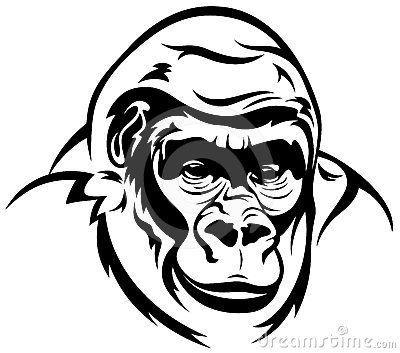 Gorilla Vector Gorilla Tattoo Face Outline Illustration