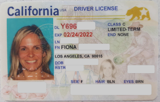 99aae58454b3f96f5be11c018977bd47 - How To Get International Drivers License In Los Angeles