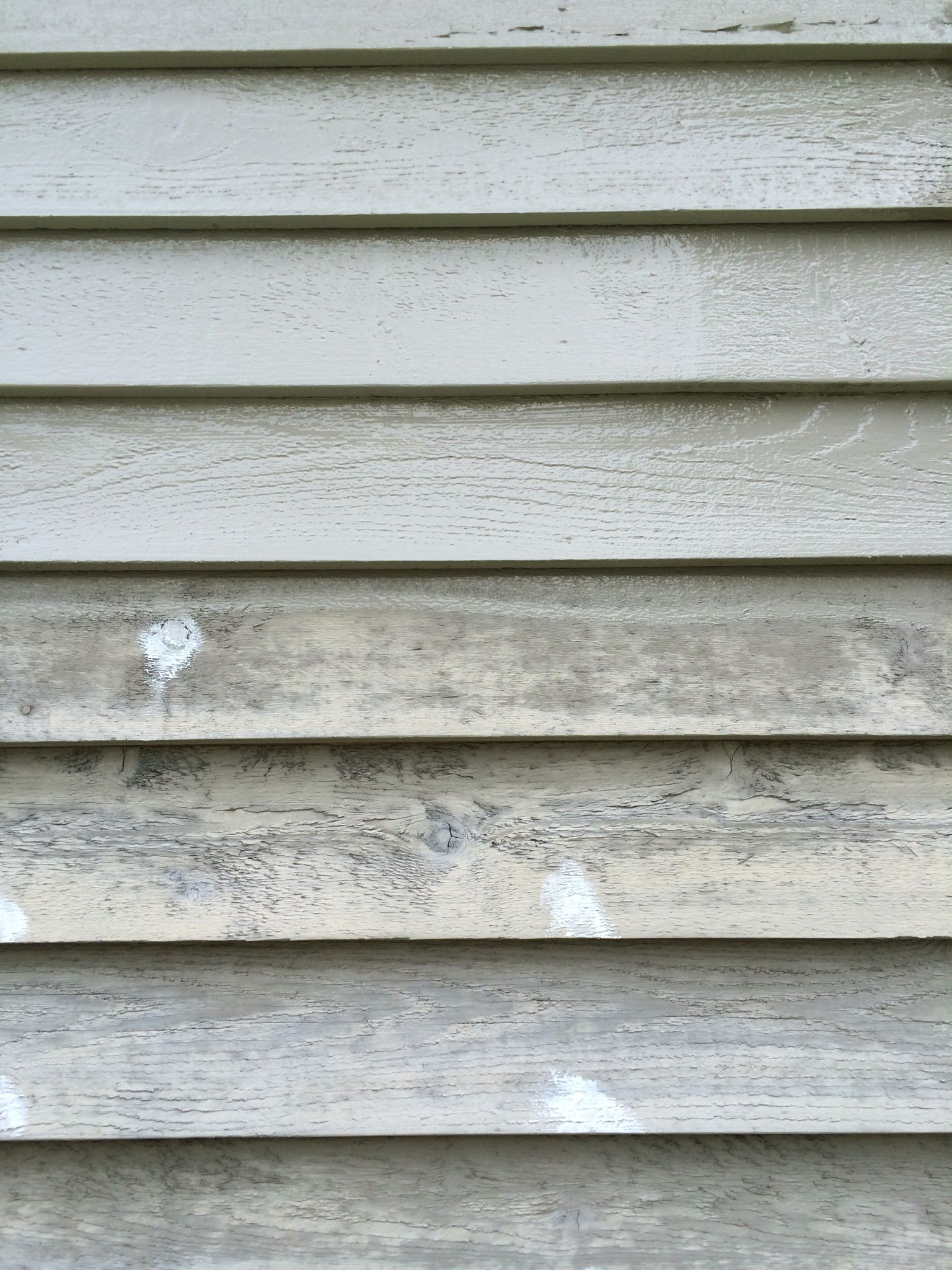Siding If Paint Does Not Look Like A Solid Color It Is Not Protecting Much Any More Oh And Carpenter Bees Love D Carpenter Bee Solid Color Siding