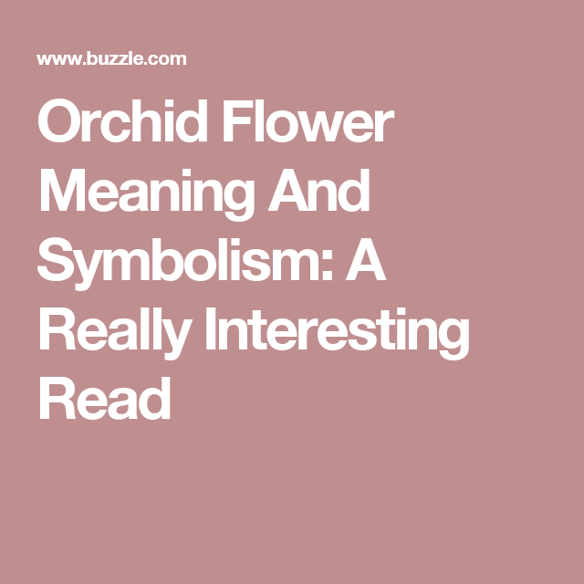 Orchid Flower Meaning And Symbolism A Really Interesting Read Flower Meanings Orchid Flower Orchids