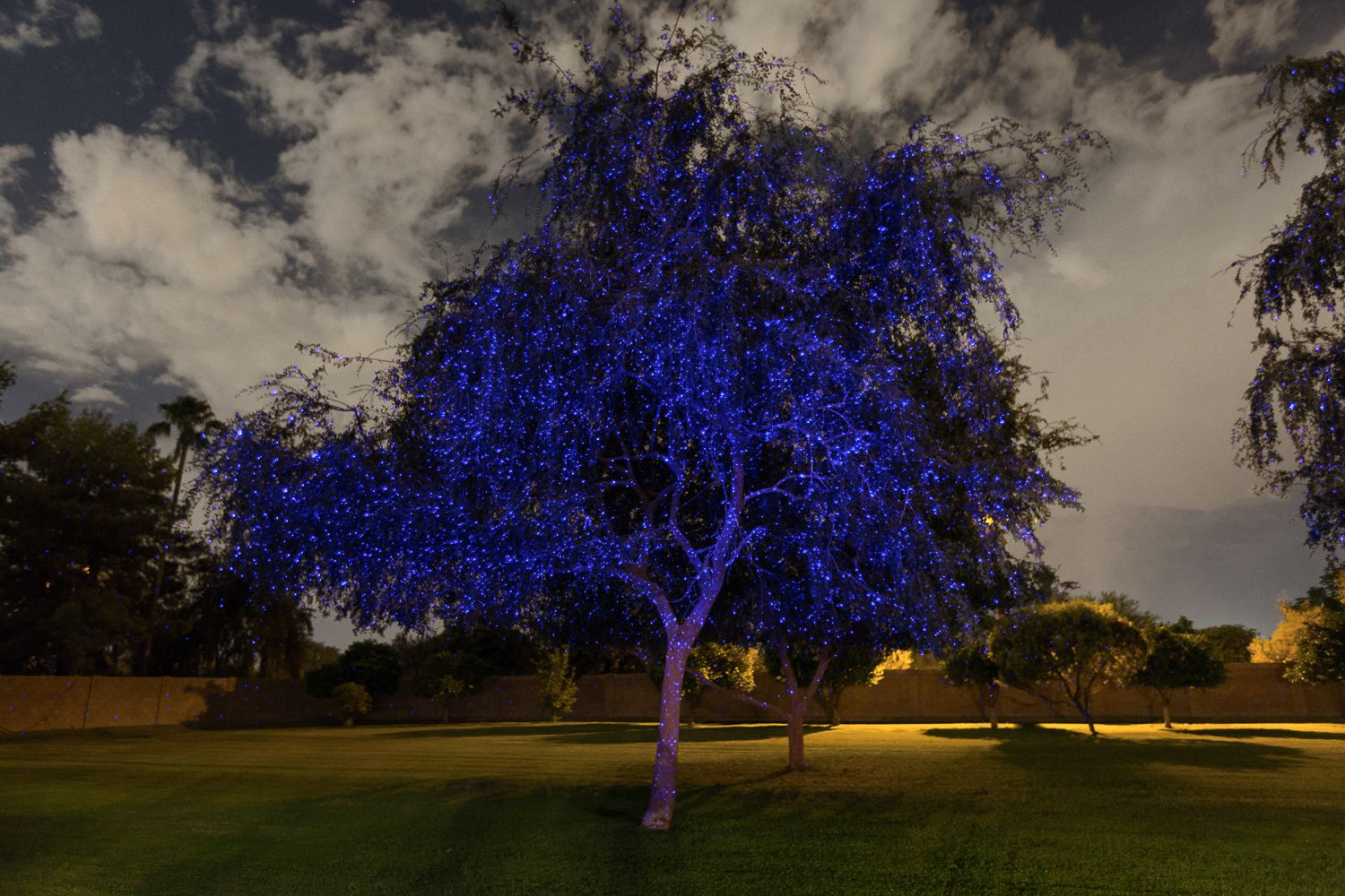 """The blue Illuminator light creates a frost look on trees and homes. Indigo Twilight (Blue) Illuminator Laser Light includes:  1 Blue Illuminator Light Flexible Stem 5"""" Ground Stake Metal Base Power Adapter UPDATE: New and Improved! Lower temperature resistance. Brighter and Wider Spray Pattern. Ability to splice into low voltage landscape cable. Shipping Now! Excellent choice for your outdoor laser Christmas lights."""