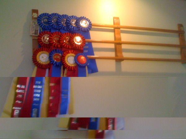 Horse Show Ribbon Display Google Search Show Ribbon Display