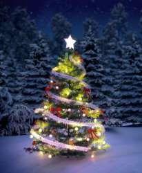 Hotmail Outlook Skype Bing Latest News Photos Videos Christmas Christmas Greetings Christmas Tree