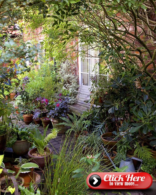 If you have a small space or tricky soil conditions ...