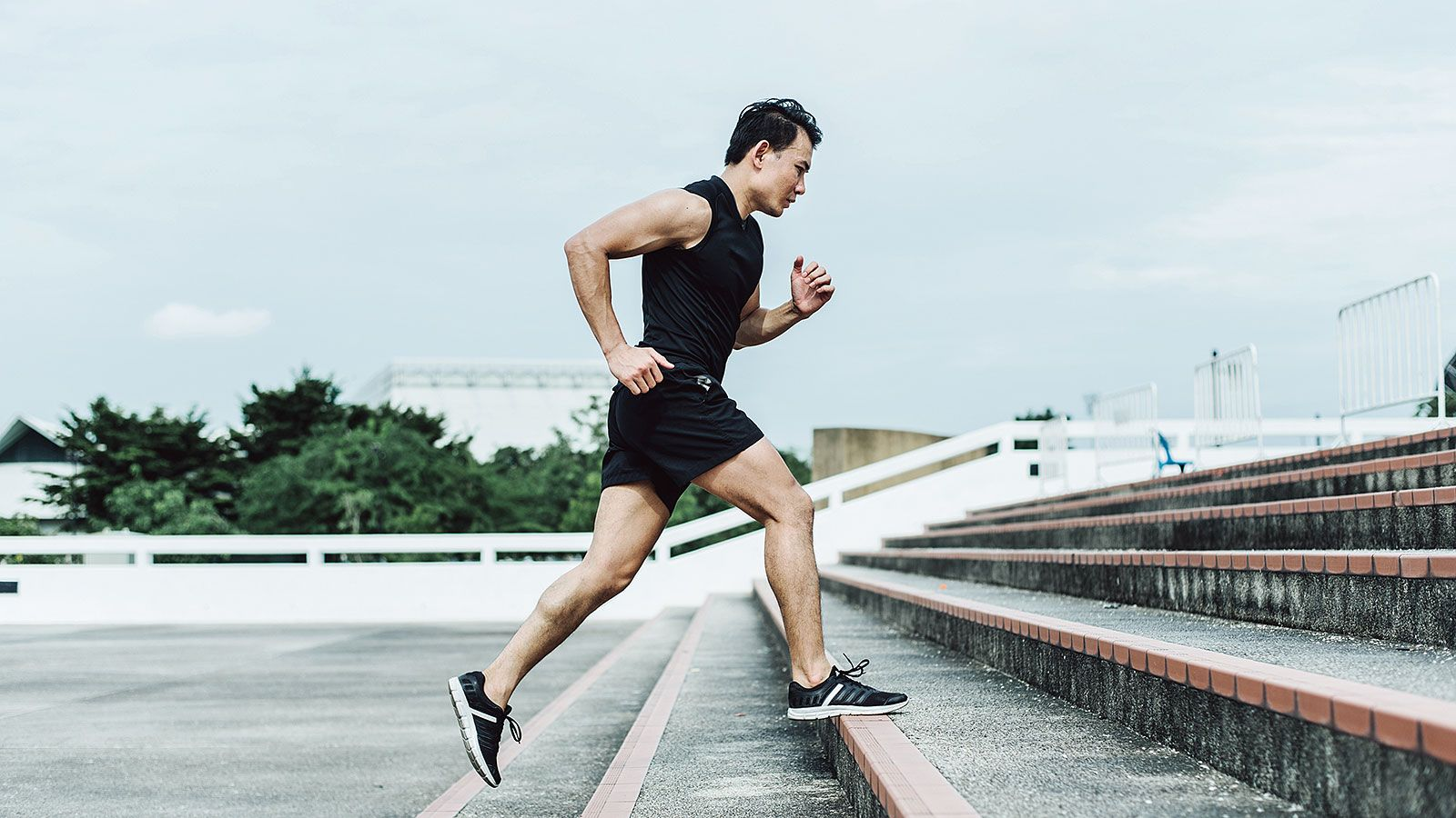 Conventional Wisdom Favors A Positive Correlation Between Habitual Physical Activity And Cognitive Performance But Exercise Benefits Of Exercise Brain System