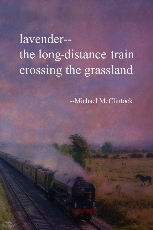 Haiku poem: lavender -- by Michael McClintock.