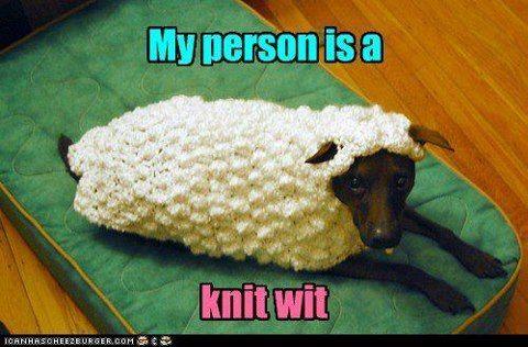 OMG ..lol...awww poor puppy!