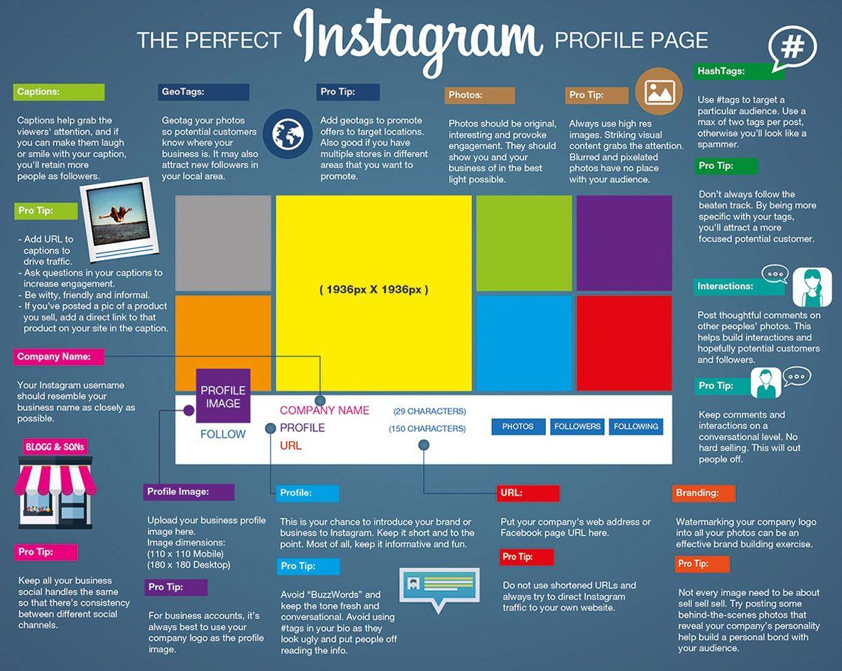 Página de Instagram – Anatomía de un perfil perfecto | Anatomía ...