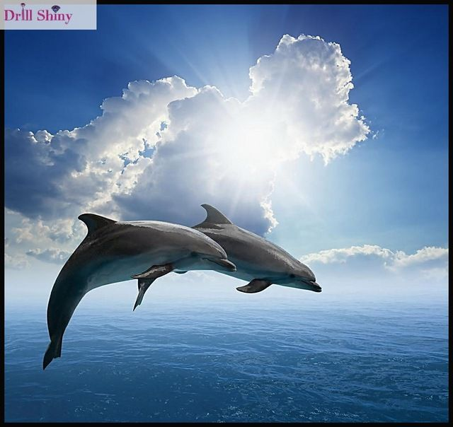Dolphin Cloud 5D DIY Diamond Painting Embroidery Cross Stitch Craft Home Decor