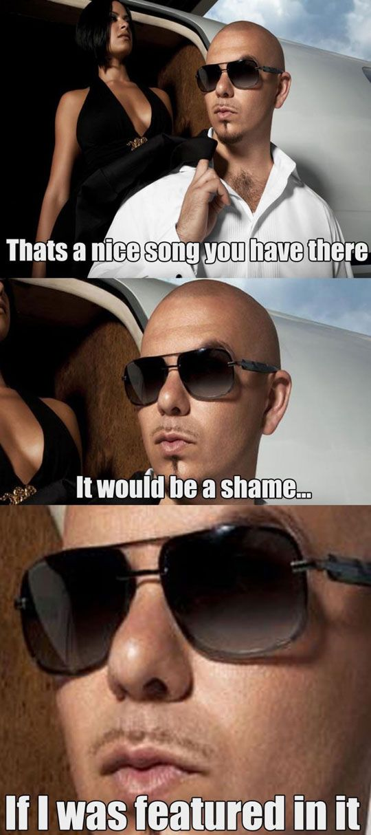 funny-Pitbull-singer-featured-song-plane | Funny | Funny