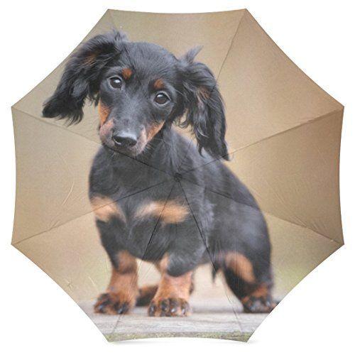 Interestprint Black Dachshund Puppy Foldable Travel Rain Umbrella