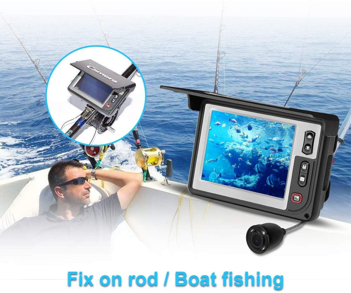 Best Underwater Fishing Camera | Underwater fishing camera, Fish