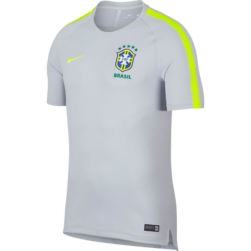 Men s Nike Gray Green Brazil National Team 2018 National Team Training  Dri-FIT Performance Jersey 982cae2ba4621