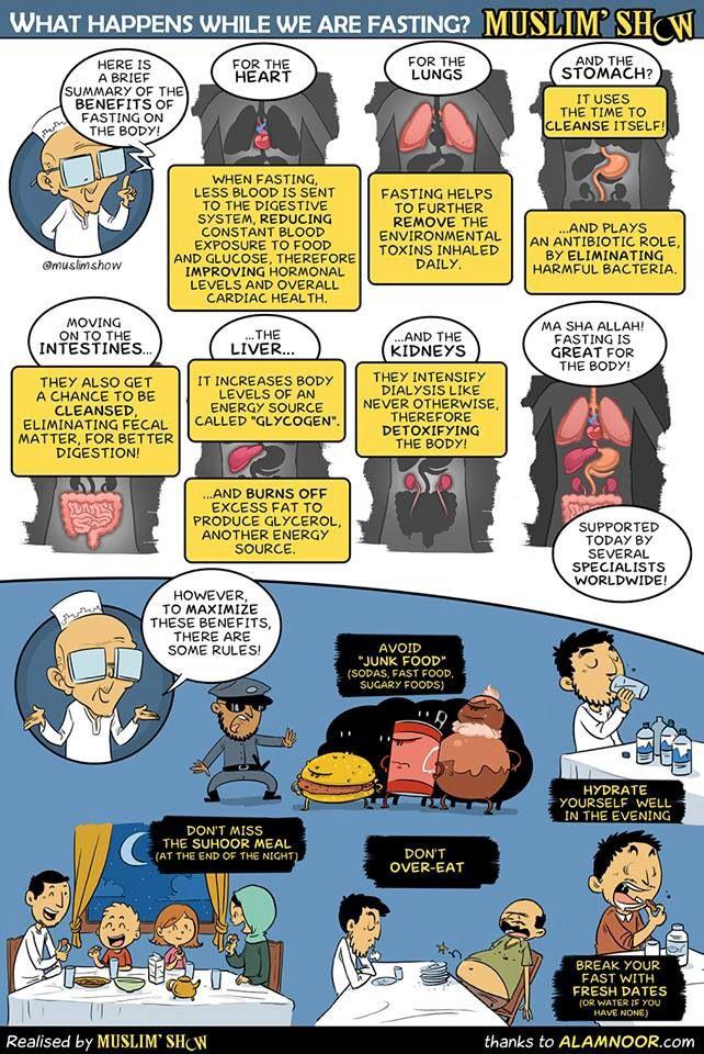 Benefits of fasting   Islamic quotes   Ramadan, Islam for ...