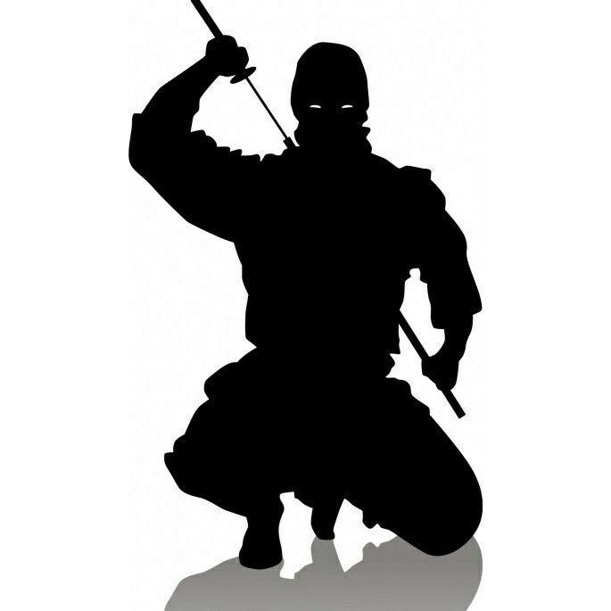 Mixed Martial Arts Games: Pin On Ninja