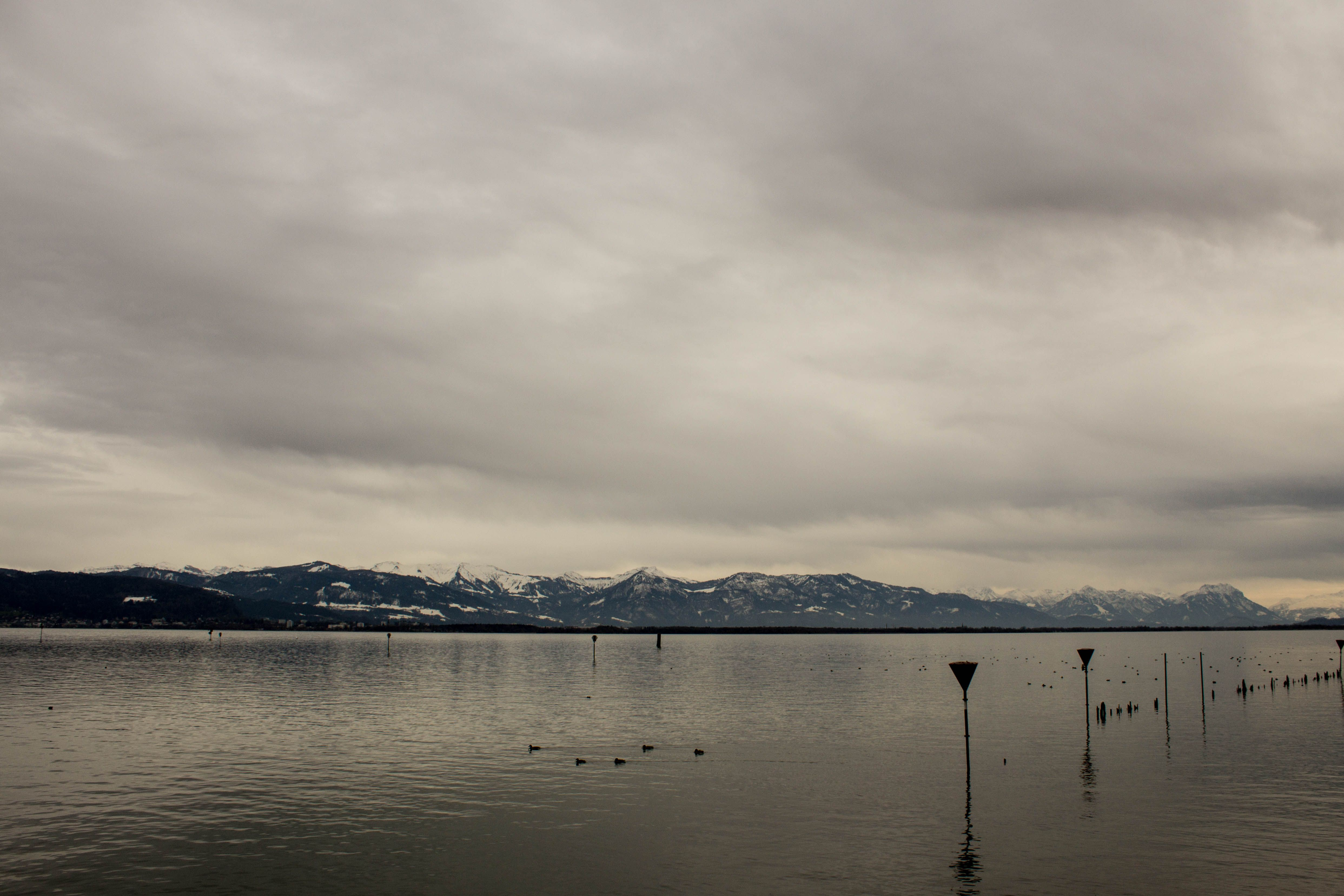 Lake Constance in early Spring Germany (4970x3313) [OC]