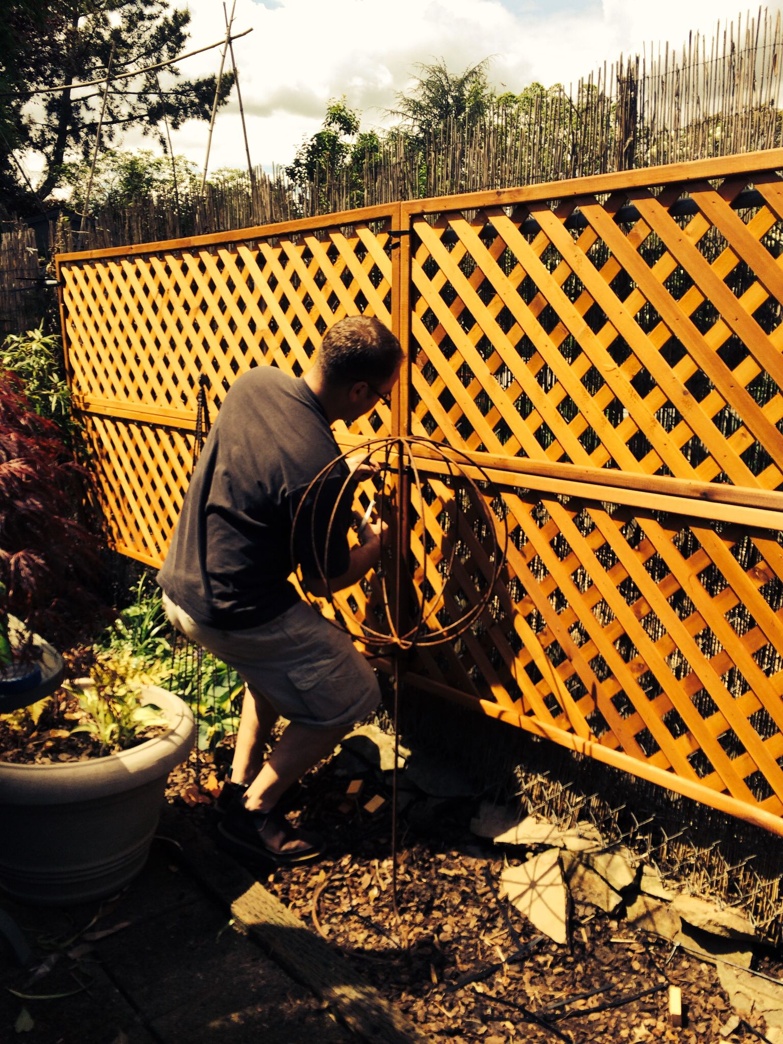 Want to hide a chain link fence? Add lattice using zip ...