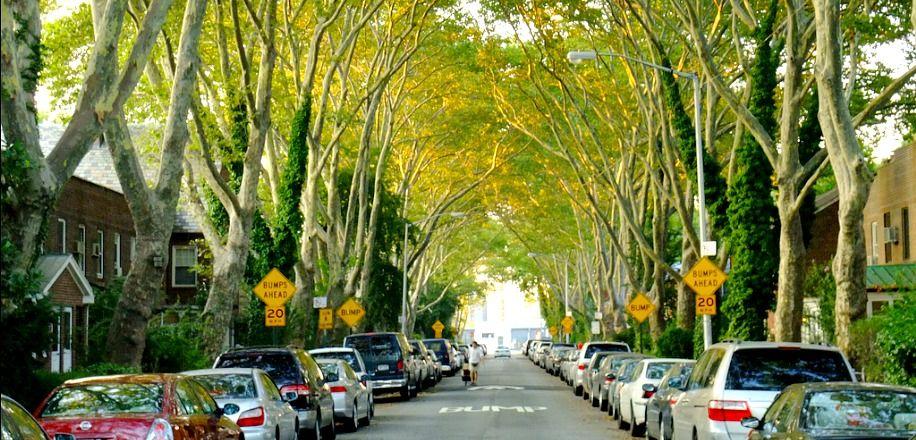 Sunnyside Apartments | Sunnyside queens, Sunnyside, Queens nyc