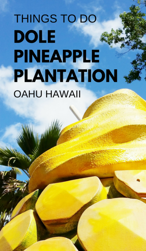Things to do at Dole Plantation hawaii pineapples. oahu