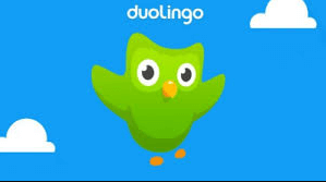 duolingo allemand