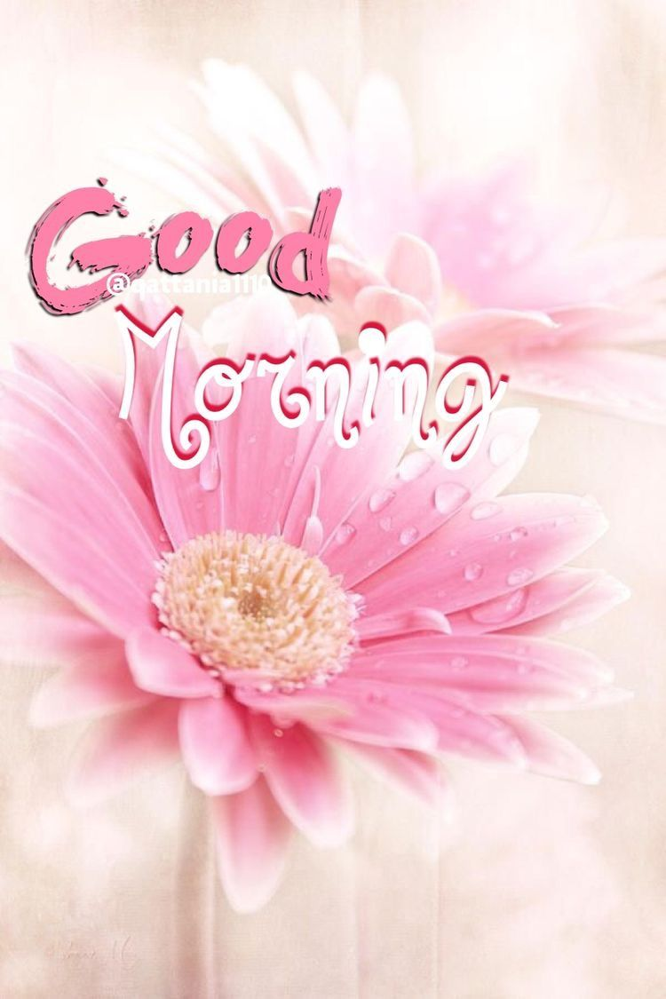 Good Morning My Dearest Ranji Have An Awesome Day Smile And Be Happy