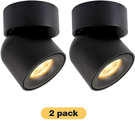 Amazon Com 2 Packs Aisilan Led Cob Adjustable Ceiling Spots Accent Lamp Surface Mounted Downlight 7w 3000k Warm Whi In 2020 Accent Lamp Downlights Living Room Kitchen