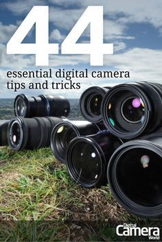 A collection of top digital camera tips and essential photography help. Learn the secrets and shortcuts to setting up your camera for high-quality pictures every time.