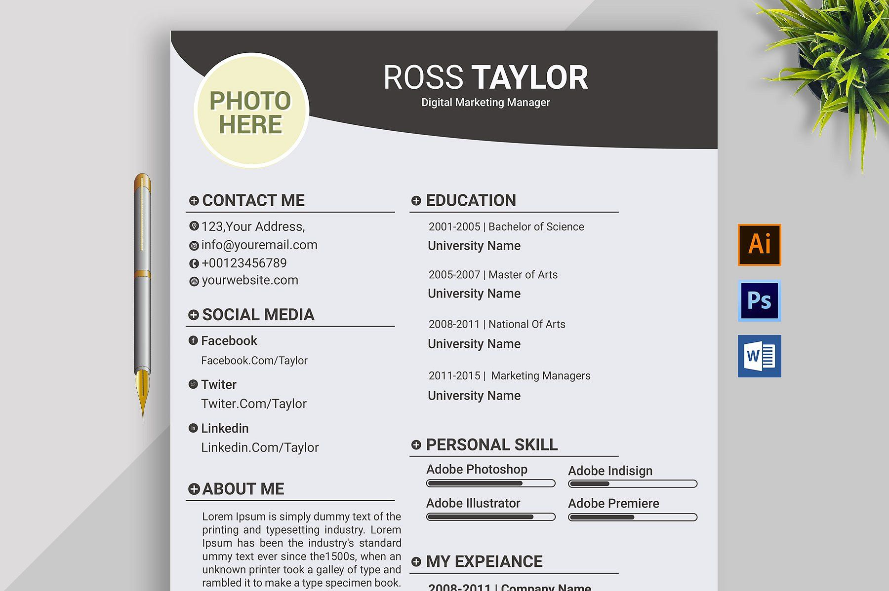 Professional Resume Template Cv Resume Microsoft Word Resume Template Professional Resume Template