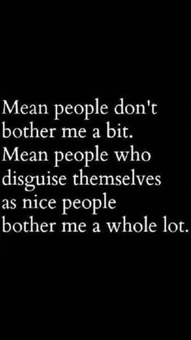 Wisdom About Life Quotes Mean People Disguised As Nice People Bother Me Quotes