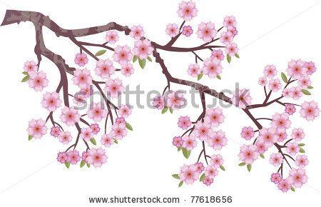 Cherry Blossom Branch Stock Photos Cherry Blossom Branch Stock Photography Cherry Blossom Branch St Cherry Blossom Drawing Tree Drawing Cherry Blossom Vector