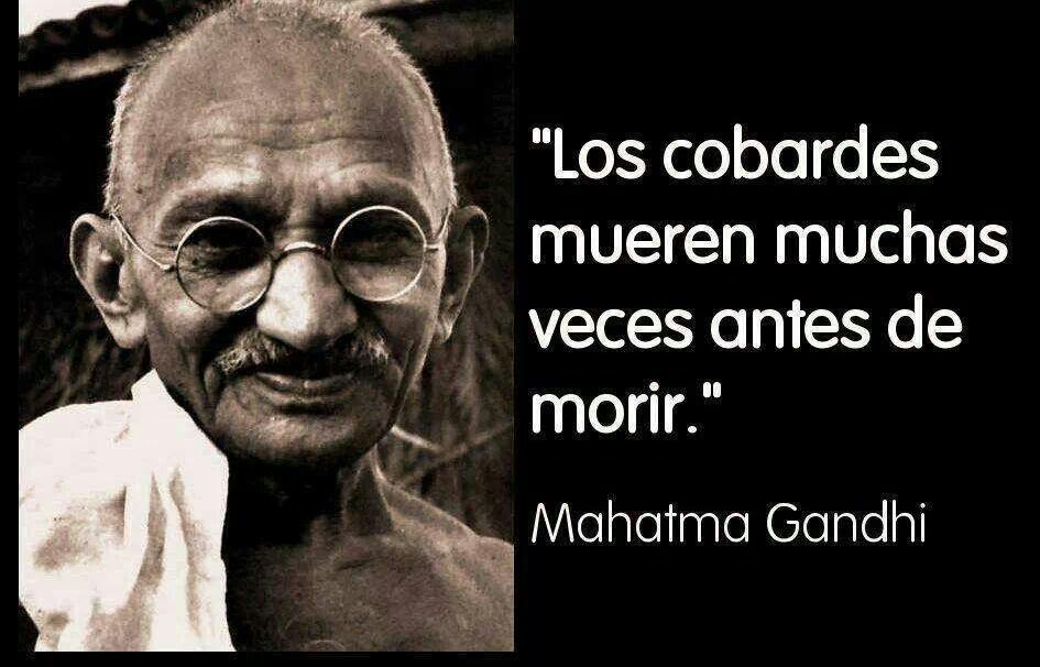 Cobardes Frases Sprichwörter Weisheiten Y Zitate