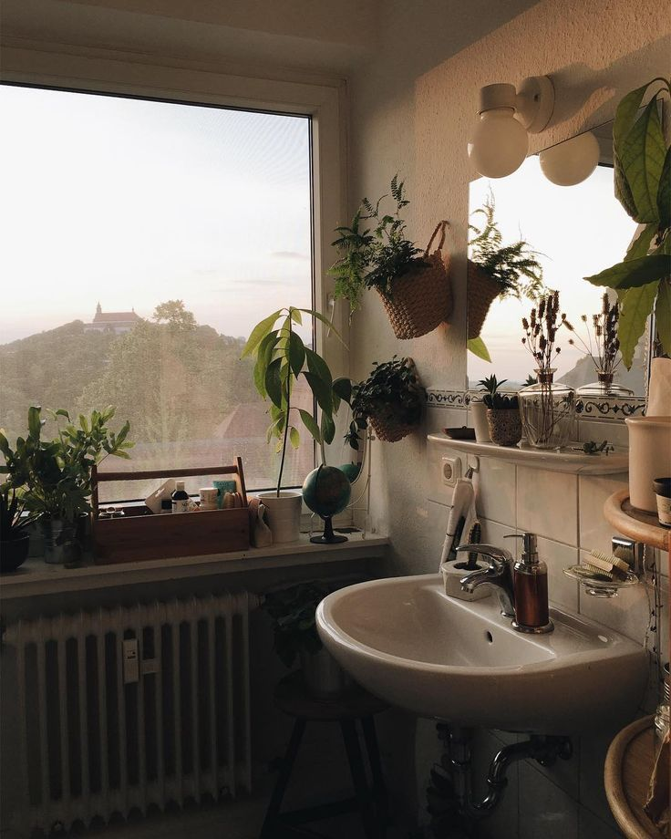 """Photo of Friederike on Instagram: """"Look at that evening light! And my new plant hangers on the wall. ✨🌿"""""""